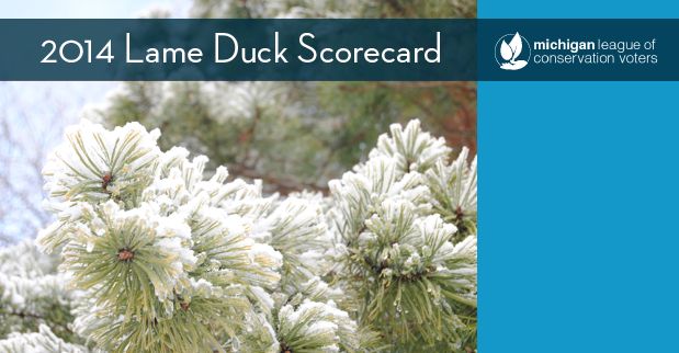 2014 Lame Duck Scorecard