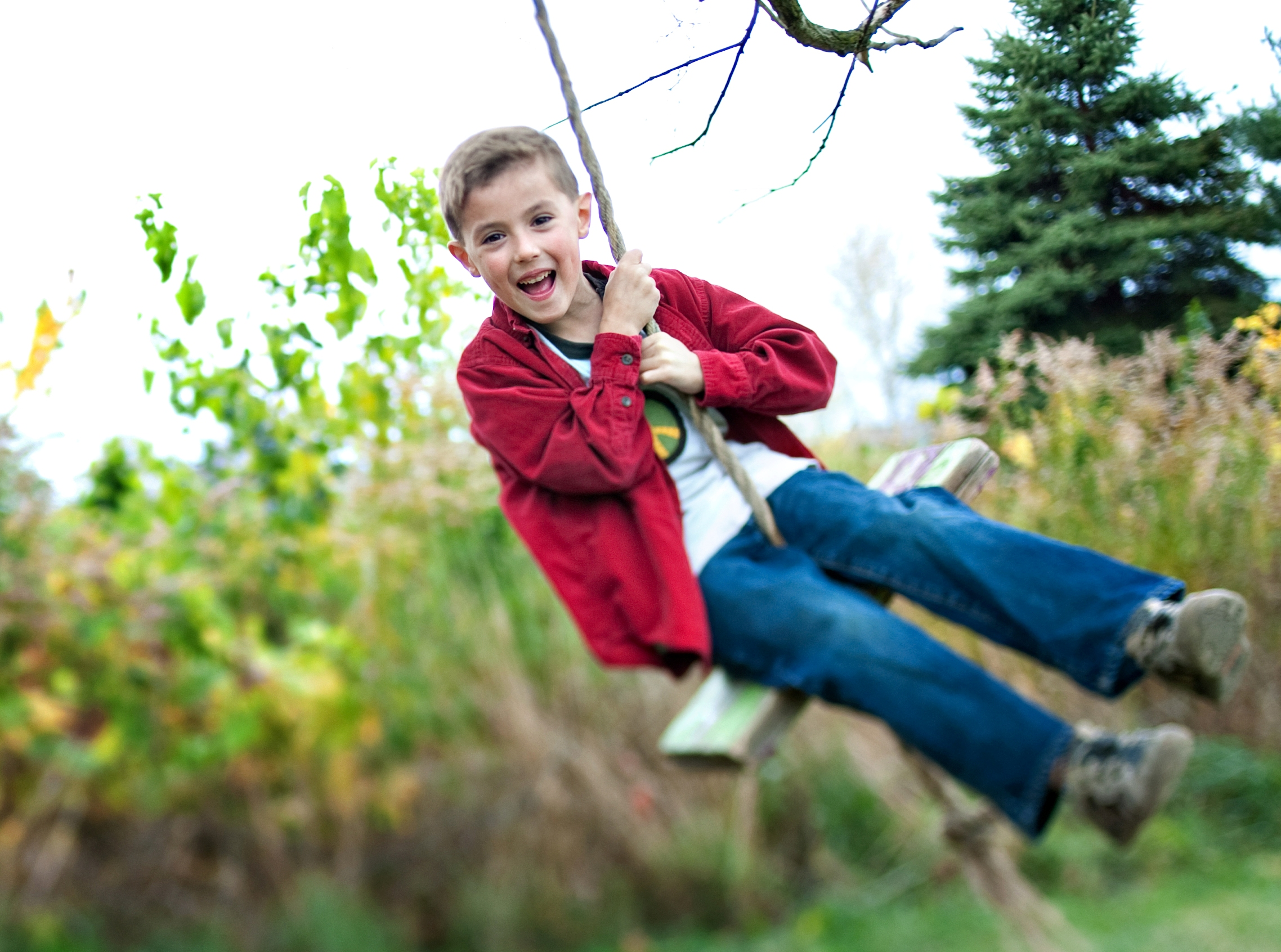 photo credit leisa thompson, boy on swing