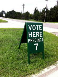 photo vote green michigan election day